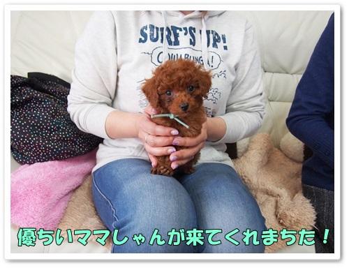 20140127_016.jpg