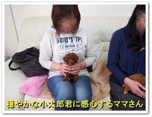 20140127_021.jpg