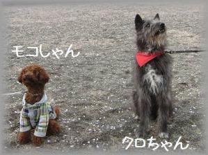 IMG_8783 - コピー (2)