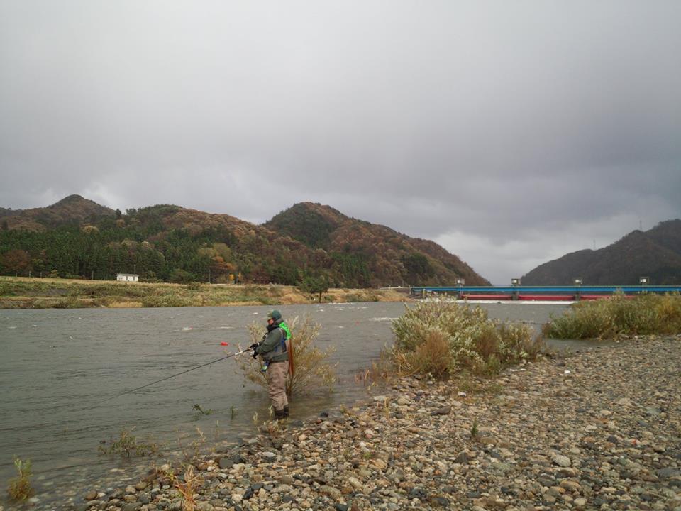 2014荒川鮭釣り 荒川サケ有効利用釣獲調査