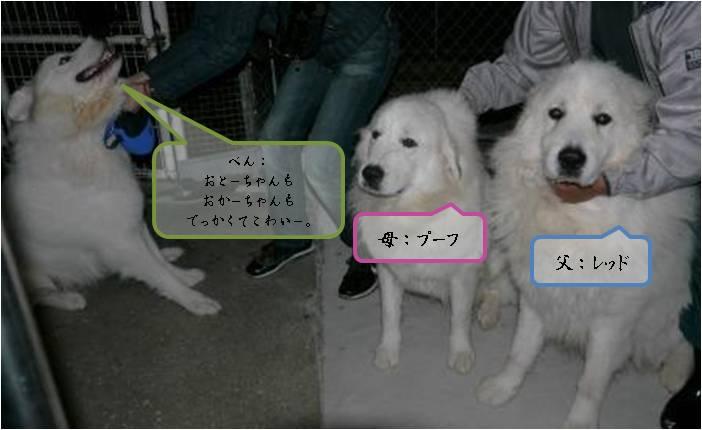 201201_里帰り23-2