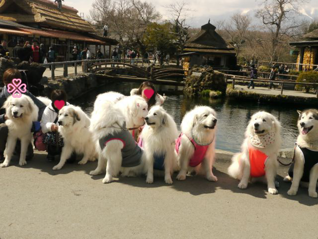 201204山中湖11集合写真2