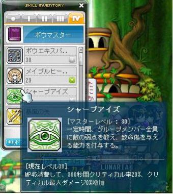 Maple120204_220942.jpg