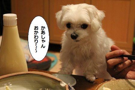 IMG_1857_1 おか 1