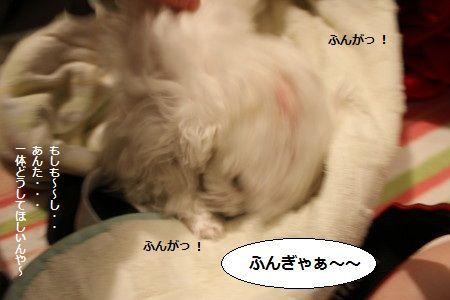 IMG_2598_1 うがy2
