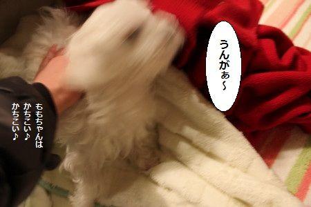 IMG_2606_1 う~~ん1