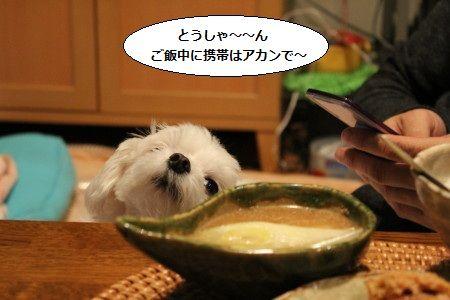 IMG_3109_1 ごはん1