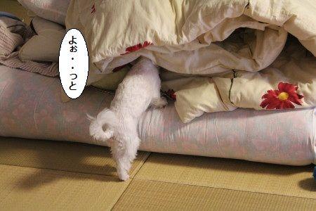 IMG_4750_1ううう1