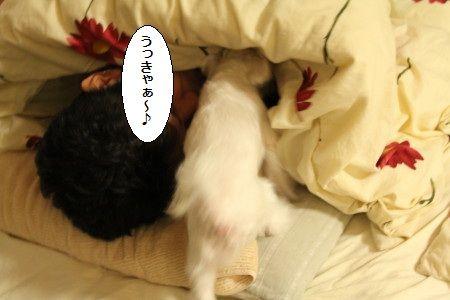 IMG_5166_1 うじゃ1