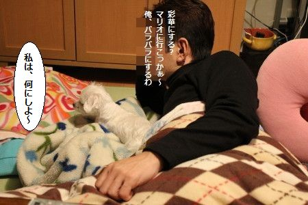 IMG_5683_1ばら 2