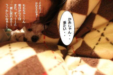 IMG_5879_1 かあ1