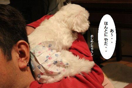 IMG_6044_1 ほんま3