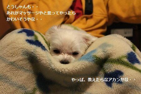 IMG_6322_1おしえ