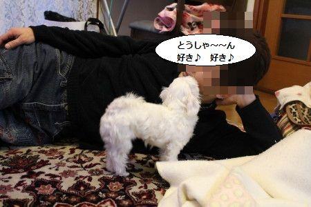 IMG_6651_1 たろう 2
