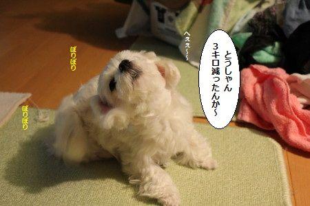 IMG_8779_1へぇぇ~~1