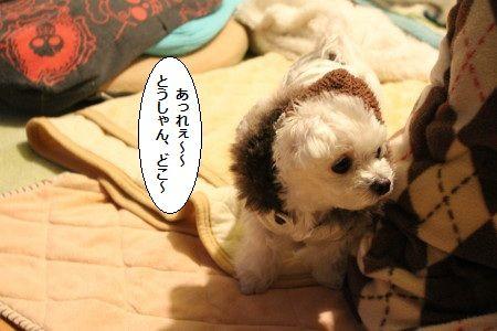 IMG_8835_1あれっぇ~~1