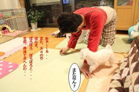 IMG_9418_1またぁ~3