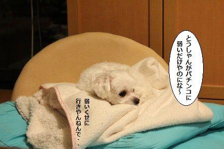 IMG_9130_1ぱち1
