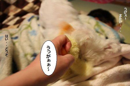 IMG_9835_1うげぇ1