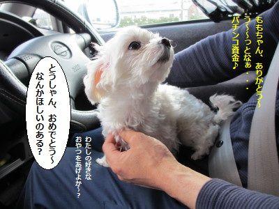 IMG_0572_1おめ2