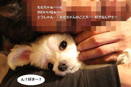 IMG_0078_1すき1