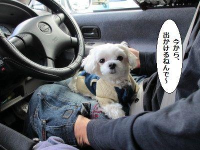 IMG_0630_1いま1