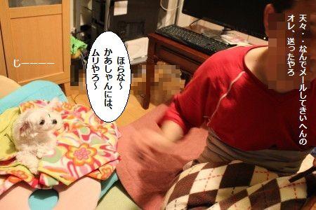 IMG_0262_1じーーー2