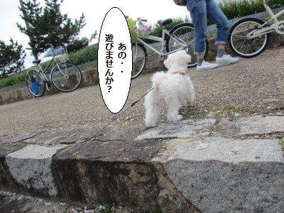 IMG_0859_1あの~~1
