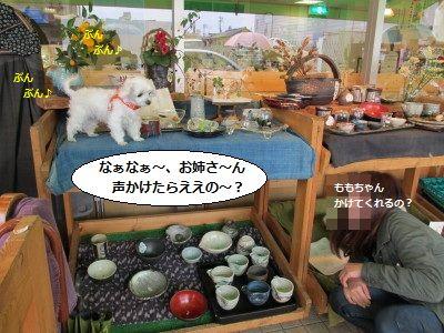 IMG_0944_1watasikoko1.jpg