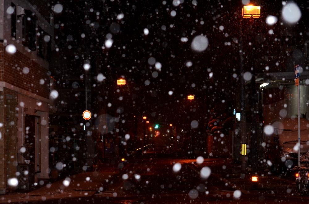 _20140207雪