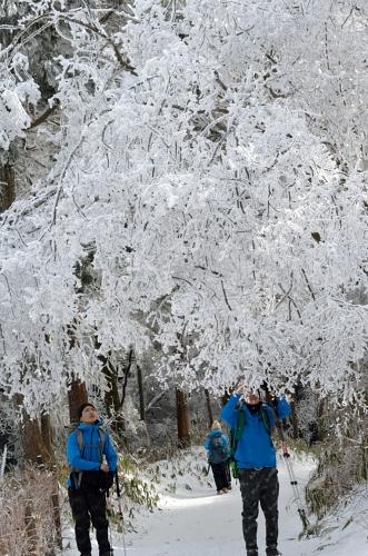 _2014金剛山霧氷DSC_4055