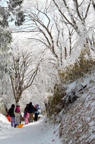 _2014金剛山霧氷DSC_4041