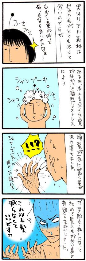 b1202081.jpg
