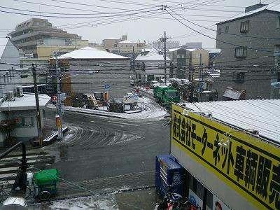 IMGP9462.jpg