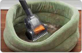 Hoover_pet_vacuum
