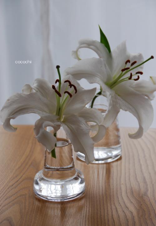 20140214_バレンタインの食卓04