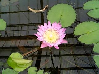九州31.jpg