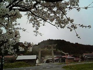 Image587.jpg