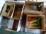 3月3日にお送りした野菜