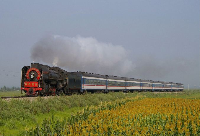 2005.8.8 QJ6911
