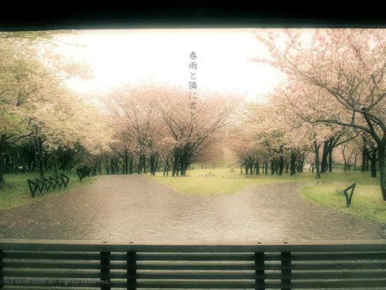 春雨と隣に君と。