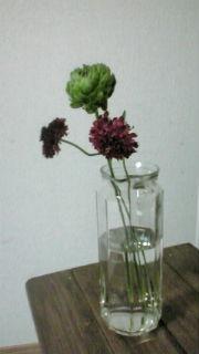 バースデイお花1