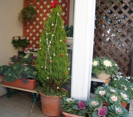 tnH25-12-03クリスマスツリー (1)_1