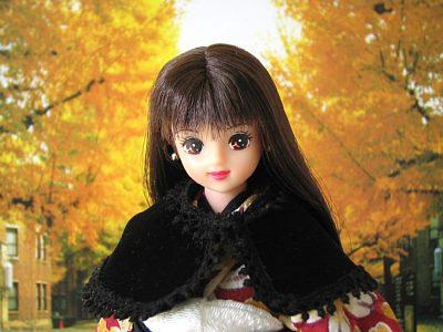 銀杏並木を歩くサユリ姫。