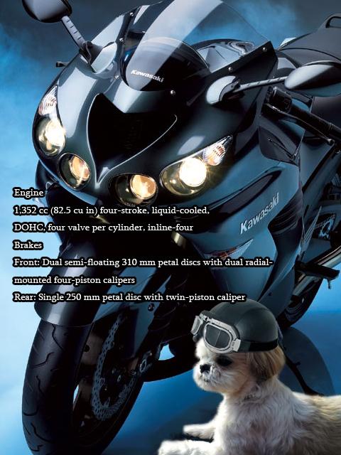 ミュー太とバイク