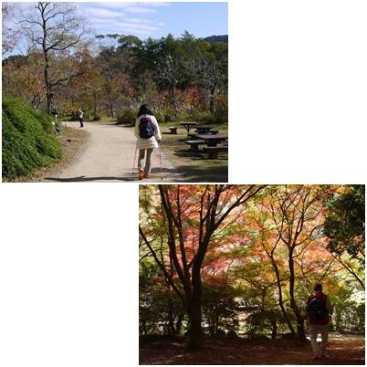 森林植物園-3