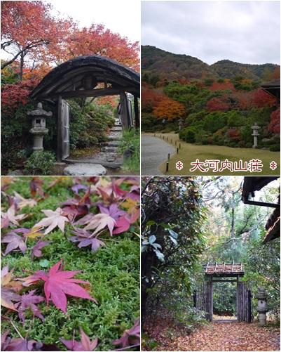 2014京都5