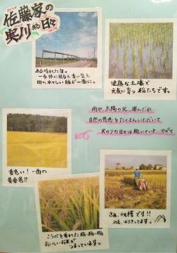東雲農園9