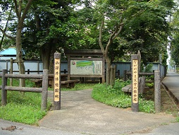 2011_0610_090347-DSC03290散歩道 (1)