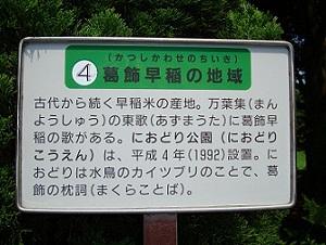2010_0727_093458-DSC01520におどり公園